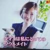 NHK  所さん!大変ですよ! 放送されました。の画像