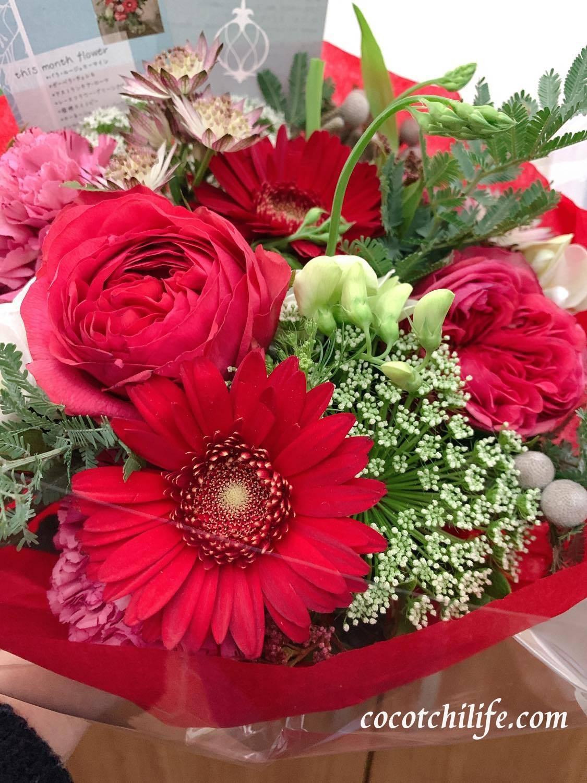 冬至を迎え、素敵な花が運を運んできてくれました。