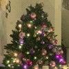 身近なクリスマスの画像
