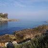久しぶりに、アドリア海の岩場散歩の画像