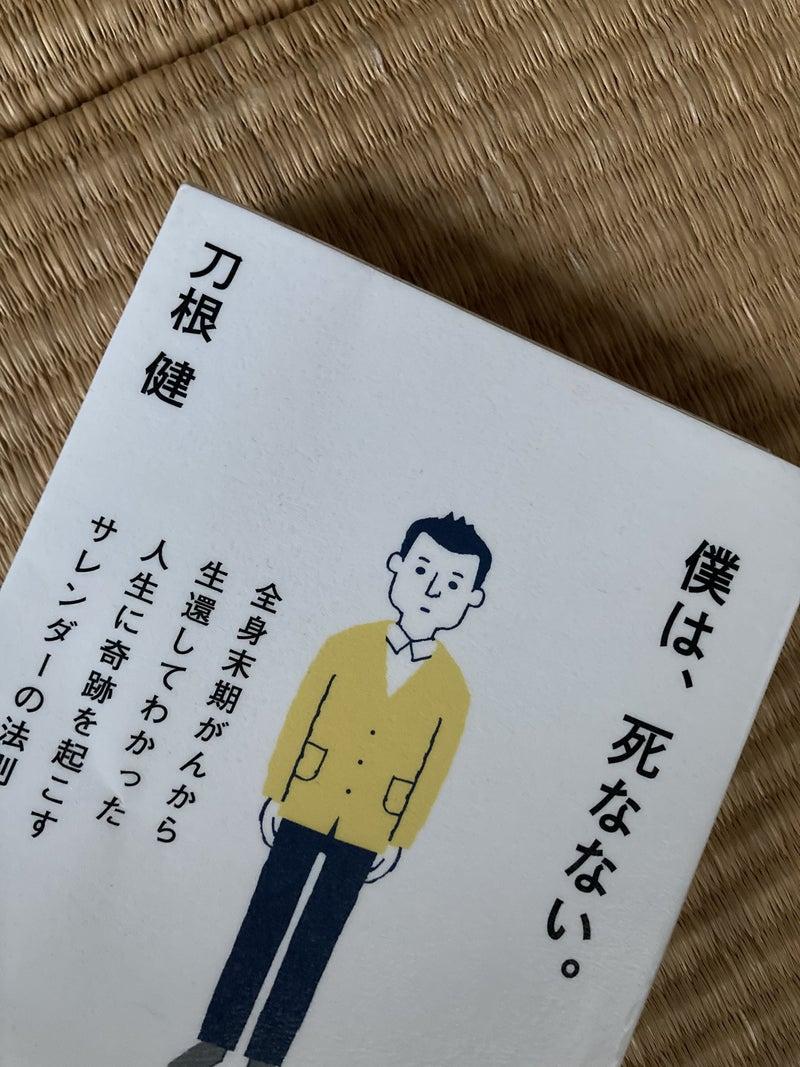 の 法則 サレンダー サレンダードB/Lの仕組みと留意点:日本