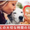 飼い主力を上げよう|愛犬との大切な時間を後悔しないための知識と技術の画像
