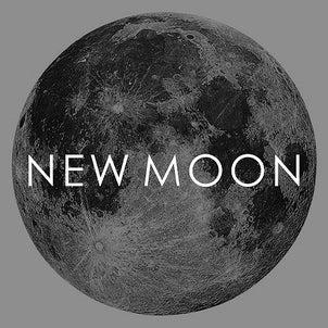 【 2021年2月12日 水瓶座の新月 】自分自身の才能で豊かな収入を得るの画像