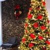 ☆Merry Christmas☆の画像