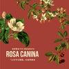 「冬の薔薇」イヌバラ Rosa caninaの自然療法の画像