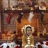 【開催】2020年 クリスマスイベントの画像