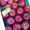 ありがとうございます 青森の5キロ りんご 農家さん直送ですの画像