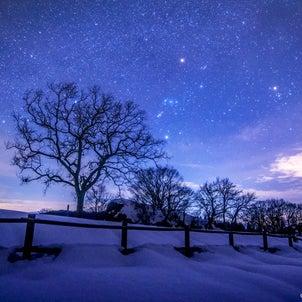️樹木とオリオン️~雪の積もった六呂師高原にて~2020.12.24/福井県大野市...の画像
