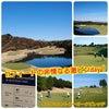 #高速グリーン #非情なる #ツアーセッティング #激ピンday #ゴルフ5 #オークビレ...の画像