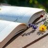 成果を上げたい人必見の本!『営業の魔法』についての画像