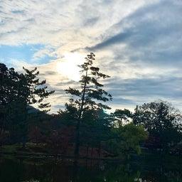 画像 鏡池に映る大仏殿が素晴らしい ~まほろばの国~奈良探訪記 12 の記事より 3つ目