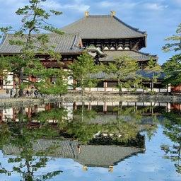 画像 鏡池に映る大仏殿が素晴らしい ~まほろばの国~奈良探訪記 12 の記事より 5つ目