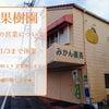 12月29日(火)石本果樹園みかん店 年末年始の営業について 三重県 紀宝町 蜜柑の画像