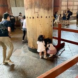 画像 やっぱり東大寺の大仏が一番! ~まほろばの国~奈良探訪記 13 の記事より 5つ目