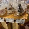 お得な福袋&立川市×paypayで20%戻ってくる、1月末までの画像