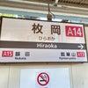 大阪でもトップクラスの波動。河内国一の宮「枚岡神社」の画像