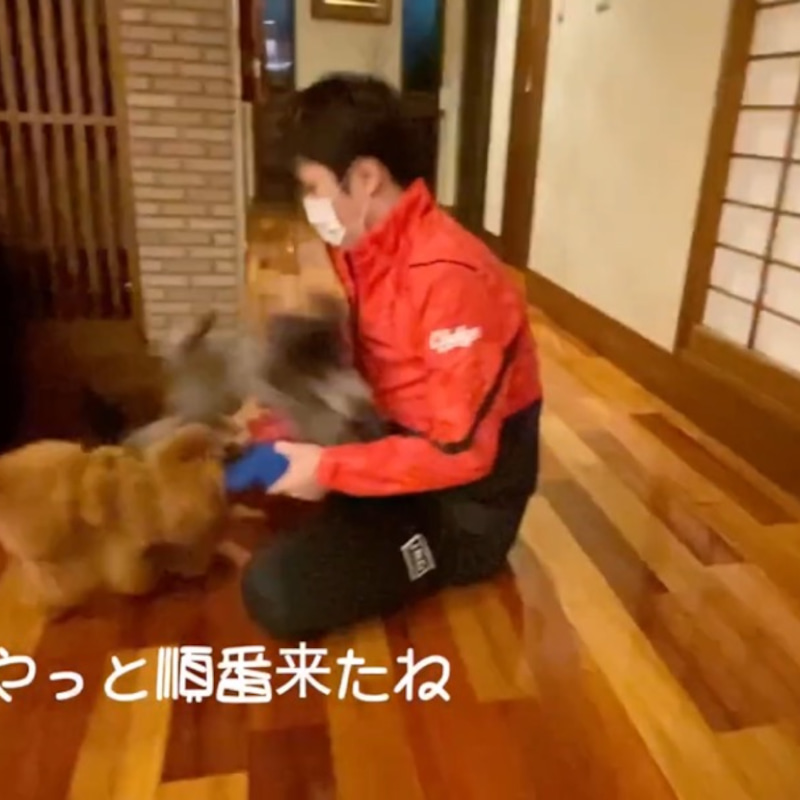 昌 磨 はるひ 宇野 ブログ
