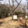 初詣山行で吾妻山の画像