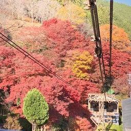 画像 紅葉の名所でもある吉野山へ行く ~まほろばの国~奈良探訪記 14 の記事より 1つ目