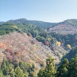 画像 紅葉の名所でもある吉野山へ行く ~まほろばの国~奈良探訪記 14 の記事より 4つ目