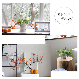 オレンジ色三昧♪アレンジ3つの画像