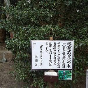 ゆっくり初詣(^^)の画像