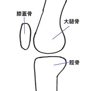 膝の痛みについての画像