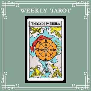 【 WEEKLY TAROT 】今週のタロットメッセージ/2021.1.11~1.17の画像
