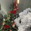 レンタルスペースのクリスマスツリーを撤去しましたの画像