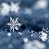 富山山王町サロン 冬期間の営業日のお知らせの画像