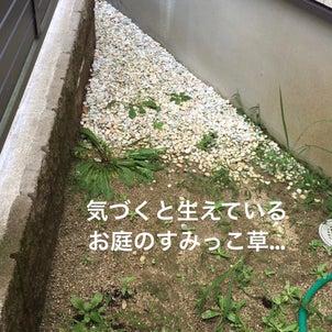 三田市N様邸・ナチュラルな風合いのマサファルトで雑草シャットアウト!の画像