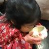 孫のお点前~お茶のある暮らしの画像