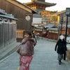 プレミアムな京都散策♪の画像