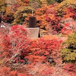 画像 多武峰・談山神社・大化の改新 ~まほろばの国~奈良探訪記 15 の記事より 1つ目