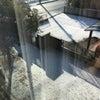 雪ならば♪外も平気!の画像