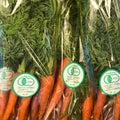 エカロンの美味しい有機野菜