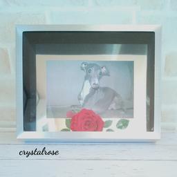 画像 赤いバラにワンチャンお写真をフォトフレームアレンジメント~オーダー品 の記事より 1つ目