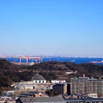 空も海も青(@1月9日、神奈川県立塚山公園)