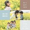 【ご予約開始】菜の花畑撮影会のお知らせです!!の画像