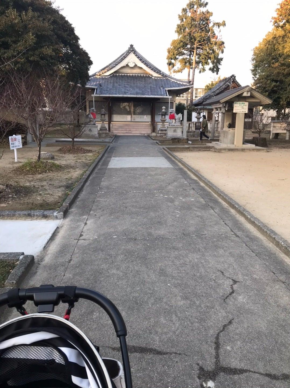 茨木市 倍賀春日神社のクロガネモチ?