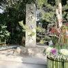今年の大神神社は 波乱万丈 ^^;の画像
