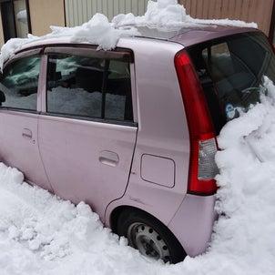 娘の車を雪山から掘り起こしたらの画像