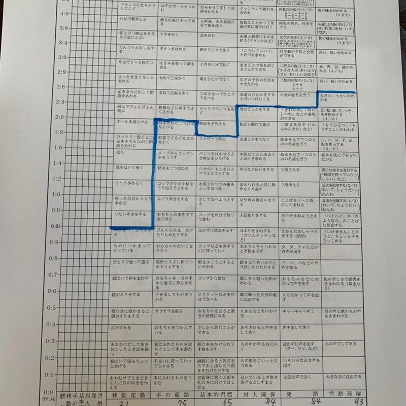 円城寺 式 乳幼児 分析 的 発達 検査 新潟県医師会 乳幼児健康診査の手引 改訂第5版