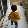 雪だ~いすき❤の画像