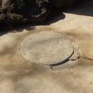 第三回 日本庭園「踏別石」の記事より