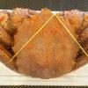 ふるさと納税!北海道産毛がに700~900g×1尾 (北海道根室市)大きくて身がぎっしり!の画像
