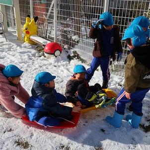 雪遊び!!の画像