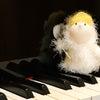 【音楽を習わせているお母さんたちへ】vol.6 ピアノを習う=ドレミを歌わなくてもいい??の画像