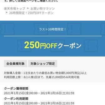 急ぎ!楽天の色々なショップで使える250円OFFクーポン!