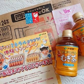 【大物当選+2件】美感保湿セット12000円相当♡と、伊藤園1ケース♡PayPay-!